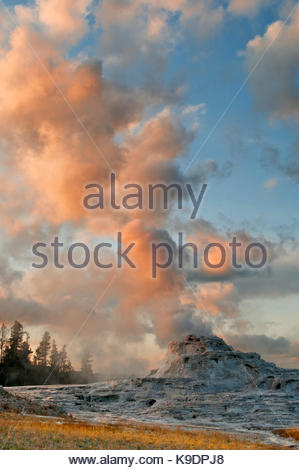Castle Geyser at Sunset, Yellowstone National Park, Wyoming - Stock Photo