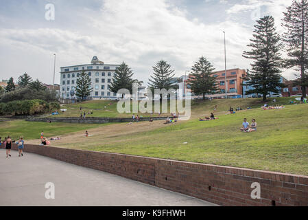 SYDNEY,NSW,AUSTRALIA-NOVEMBER 21,2016: Foreshore area at Bondi Beach with people relaxing with Norfolk Pine trees - Stock Photo