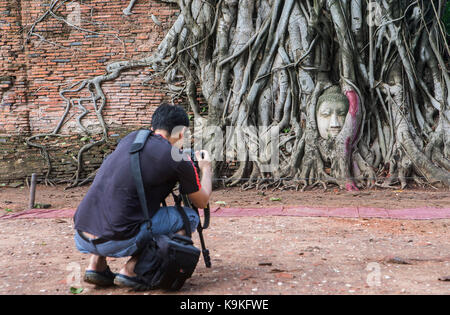 Tourist taking pictures, Buddha head in banyan tree roots at Wat Mahathat temple, in Ayutthaya, Thailand - Stock Photo