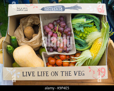 Stokesley Agricultural Show display by Riverford Organic Farmers suppling fruit and vegetables in a box  direct - Stock Photo