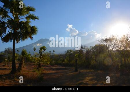 Mount Agung in Bali with trees in the forground surrounded by clouds - Stock Photo