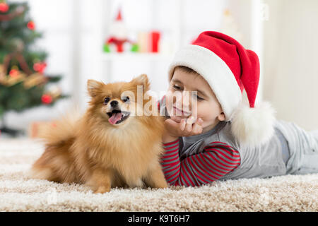 Little boy and dog at Christmas - Stock Photo