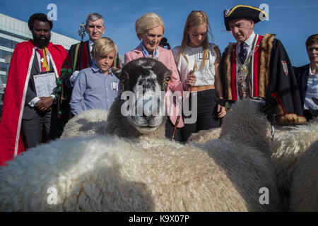 London, UK. 24 September 2017. Celebrity chef Mary Berry joins Freeman of the City of London driving sheep over - Stock Photo