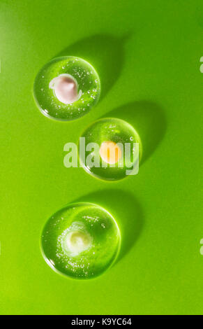 Three drops of cosmetic clear gel with various creams on a green background. The concept of biological compatibility - Stock Photo