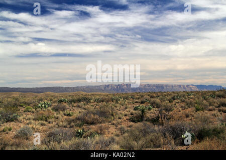 Beautiful Southwestern Landscape in Big Bend National Park in the State of Texas - Stock Photo