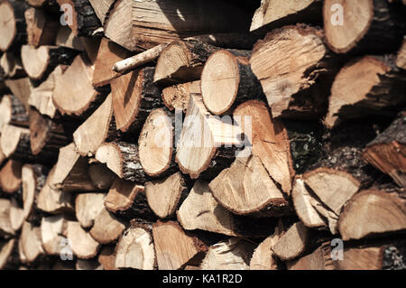 Pile of wood logs ready for winter, close up - Stock Photo