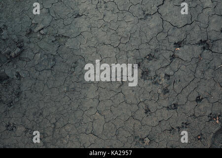 Wet surface soil dry and crack with the heat of the sun making mud details of dry mud closeup view on texture and dirt stock photo sciox Images