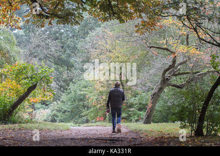 London, UK. 25th Sep, 2017. People walk under a canope of leaves which are beginning to colour on an overcast Autumn - Stock Photo