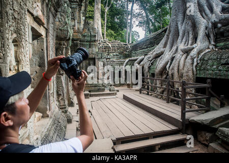 Ta Prohm temple, Angkor Archaeological Park, Siem Reap, Cambodia - Stock Photo