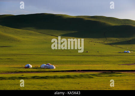 Mongolian traditional houses in immense grassland.They call these tents as ''Yurt'' - Stock Photo
