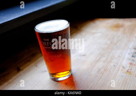 traditional norfolk beer in half pint glass - Stock Photo