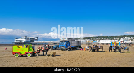 WESTON SUPER MARE SOMERSET ENGLAND A SUNNY DAY WITH DONKEY AND  HORSE AND CART RIDES ON THE SANDY BEACH WITH THE - Stock Photo