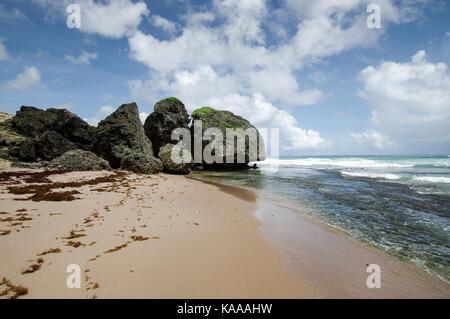 Giant rocks and rock formations near Bathsheba, east coast of Barbados - Stock Photo