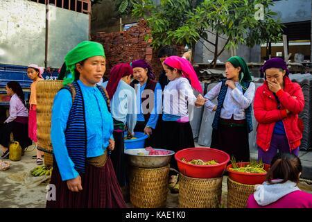 HA GIANG, VIETNAM - November 08, 2015: Woman in ethnic Hmong fair in Ha Giang, Vietnam. Ha Giang is home to mostly - Stock Photo