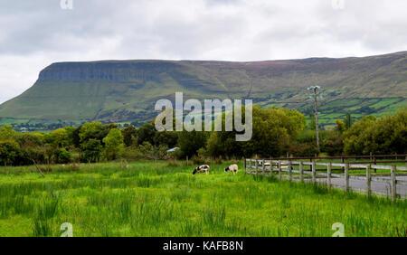 Part of Ben Bulben from a nearby farm in Sligo, Ireland. - Stock Photo