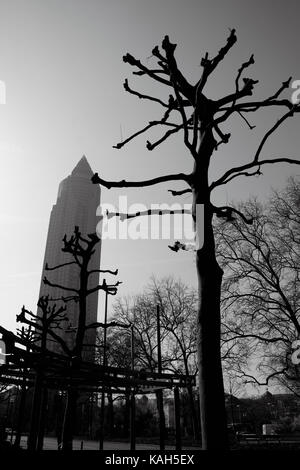 Frankfurt am Main, Germany - March 16, 2017: Contrast silhouettes of leafless plane-trees with Messeturm (Trade - Stock Photo