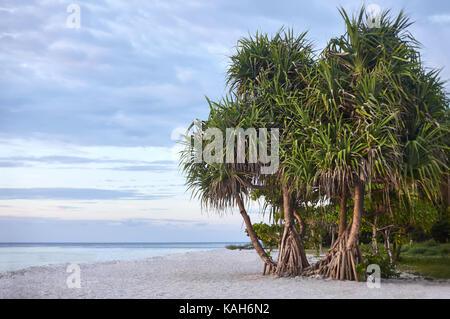 Paradise beach on the tropical island - Stock Photo