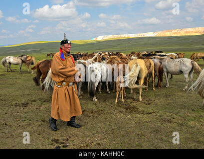 Mongolian man, horse-honored, in traditional dress with herds of horses, Mongolia - Stock Photo