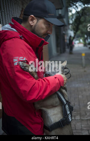 Mexico City, Mexico City, MX. 26th Sep, 2017. Rescuers from several countries of the NGO K9 denounce that they have - Stock Photo