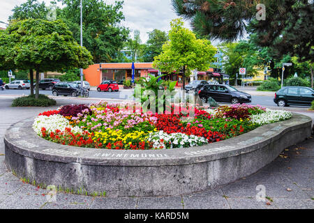 Berlin Wittenau. Reinickendorfborough, Attractive summer garden with flowering plants in old container outside the - Stock Photo