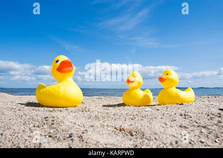 Baltic coast, elastic ducks on the beach, Ostseekueste, Gummienten am Strand - Stock Photo