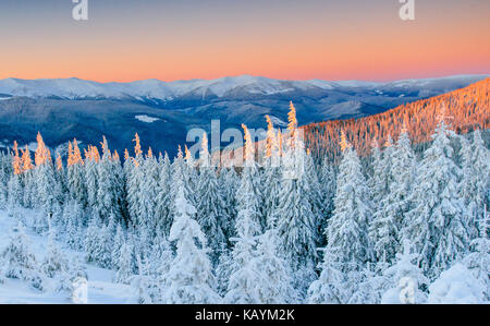 Mysterious winter landscape majestic mountains in winter. Magical winter snow covered tree. Winter road in the mountains. - Stock Photo
