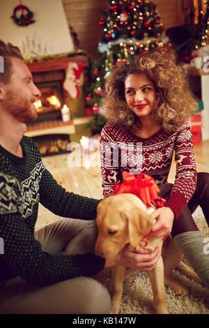 Girl bringing sweet dog as Christmas surprise - Stock Photo