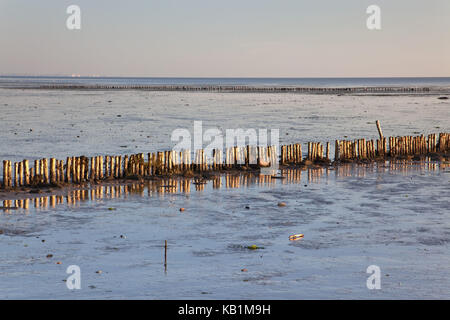 Breakwaters in the watt, Keitum on the island Sylt, Sylt East, Schleswig - Holstein, Germany, - Stock Photo