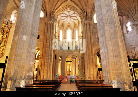 Spain, La Rioja, interior view of the cathedral of Santo Domingo de la Calzada, - Stock Photo