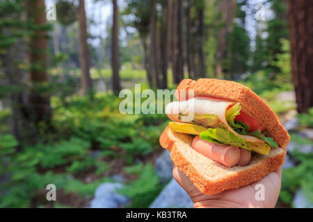 Close up shot of handmade sandwich, made with sausage, ham and vegtable - Stock Photo
