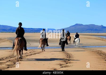 Horseback riding on Longufjordur Beach, Snaefellsnes Peninsula, Iceland - Stock Photo