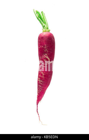 fresh long radish isolated on white background - Stock Photo