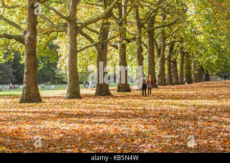 London, UK. 28th Sep, 2017. UK weather. People walk amongst a carpet of leaves in Saint James Park on a sunny day - Stock Photo
