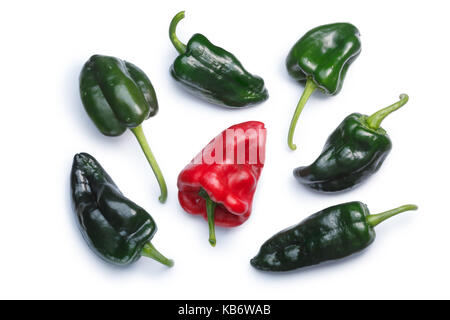 Poblano (Ancho) chile peppers (C. annuum), ripe and green pods, top view. Clipping paths, shadows separated - Stock Photo