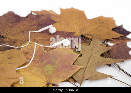 Music autumn abstraction. Autumn texture with white headphones - Stock Photo