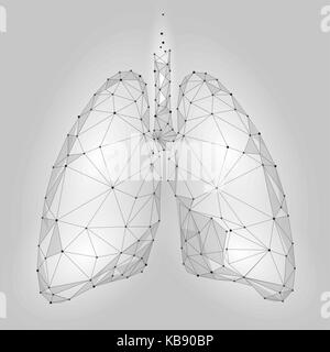 Human Internal Organ Lungs. Low Poly technology design. White Gray color polygonal triangle connected dots. Health - Stock Photo