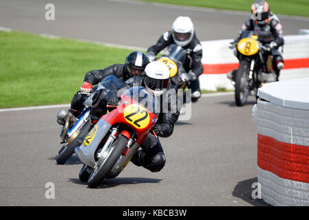 1966 MV Agusta 500/3 owned by Joaquin Folch Rusinol racing at Goodwood Revival 2017. Space for copy