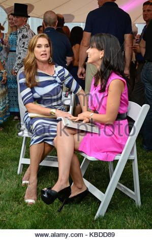 Great Brooke Shields Brooke Shields Seen At The Rd Annual St Barth Hamptons  Gala Presented With Brooke Shields Furniture