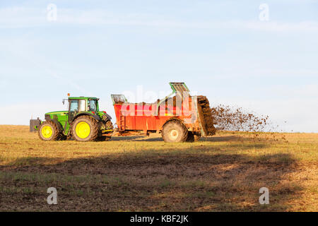 Farmer spreading  natural manure from his livestock  for organic fertilisation using a muck spreader on an overwintered - Stock Photo