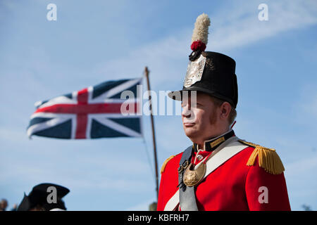 Portrait of 19th century British redcoat army officer. - Stock Photo