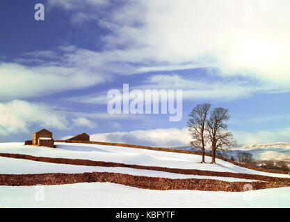 A winter view of the Wensleydale countryside, in the Yorkshire Dales, after  a heavy fall of snow - Stock Photo