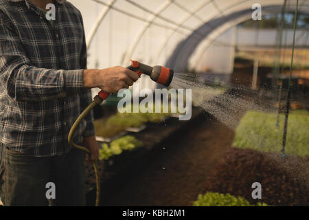 Mid-section of farmer watering plants in greenhouse - Stock Photo