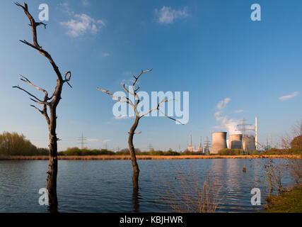 Two dead trees in front of a giant coal-fired power station. - Stock Photo