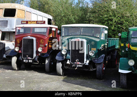 Two Leyland lorries, an Octopus (BTD 90) and a Beaver (JT 2561), are seen at the West of England Transport Collection - Stock Photo