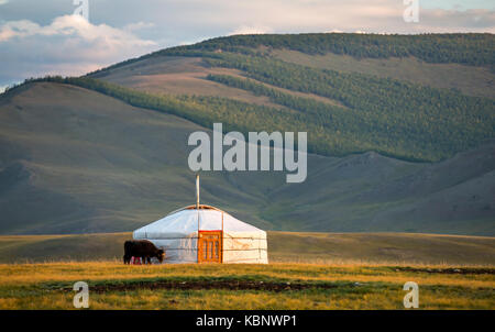 mongolian family gers in a landscape of northern Mongolia - Stock Photo