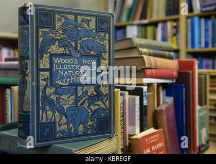 Books in secondhand bookshop - Stock Photo