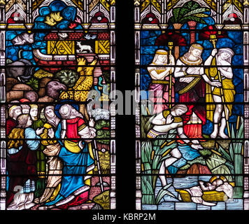 The preservation of life, Clayton and Bell 1880, Hull Minster, United Kingdom - Stock Photo