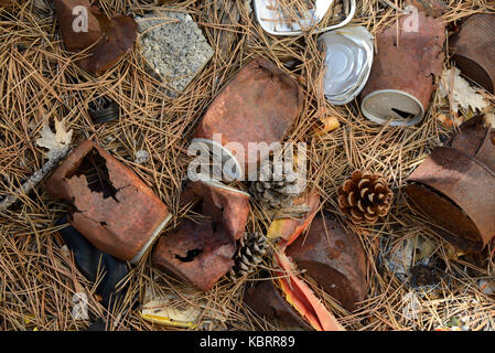 Rusty Old Tin Cans Scattered on Forest Floor - Stock Photo