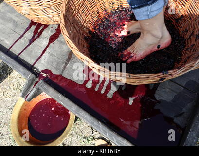Crimea, Russia. 30th Sep, 2017. A person stomps grapes at the WineFest grape harvesting and wine making festival - Stock Photo