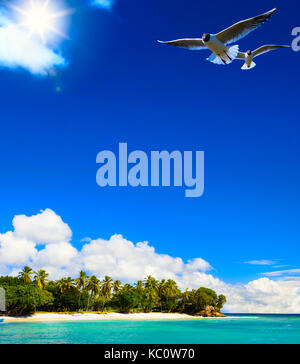art Beautiful tropical sea landscape with a view at palms on the white beach on a Caribbean island - Stock Photo
